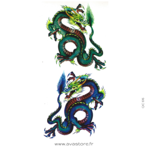 dragons multicolores