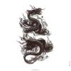 image tatouage dragon de feu
