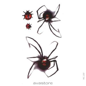 araignée 3d