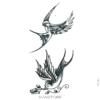 image tatouage hirondelle